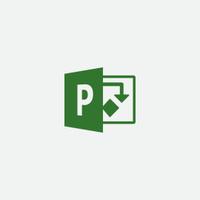 Microsoft Project Professional 2019 1 license(s) Multilingual